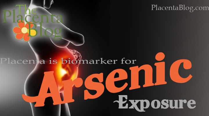 Placenta is a reliable biomarker for arsenic exposure